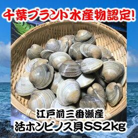 千葉県三番瀬産活ホンビノス貝SS2kg【白ハマグリ、大アサリ】30〜40粒程度