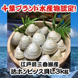 千葉県三番瀬産活ホンビノス貝L3kg【白ハマグリ、大アサリ】14〜18粒程度