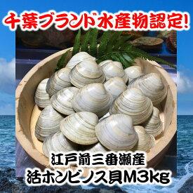 千葉県三番瀬産活ホンビノス貝M3kg【白ハマグリ、大アサリ】21〜25粒程度