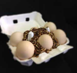 焦がしたまごギフト18個入熟成 ゆでたまご 卵かけ 卵ご飯 卵かけご飯 たまごかけ たまごかけごはん 卵 ごはん たまごかけご飯 卵かけご飯 たまごかけ御飯 卵かけ御飯 醤油にぴったり たまご