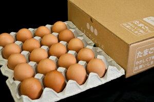 No.001究極のたまごかけごはん専用たまごご自宅用お買い得セット小20個入卵かけ卵ご飯卵かけご飯たまごかけたまごかけごはん卵ごはんたまごかけご飯卵かけご飯たまごかけ御飯卵かけ御飯醤油にぴったりたまごのソムリエ小林ゴールドエッグ