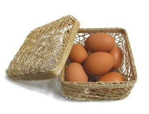 究極のたまごかけごはん専用たまご20個入(破損保証5個含む)【送料無料】定期購入卵かけ 卵ご飯 卵かけご飯 たまごかけ ごはん 卵 たまごかけご飯 卵かけご飯 たまごかけ御飯 卵かけ御飯 醤