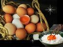 選べる!ギフト24個入プレゼント 贈り物 おくりもの 卵かけ 卵ご飯 卵かけご飯 たまごかけ たまごかけごはん 卵 ごはん たまごかけご飯…
