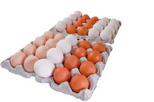 たまごのソムリエセット40個入【送料無料】定期購入卵かけ 卵ご飯 卵かけご飯 たまごかけ たまごかけごはん 卵 ごはん たまごかけご飯 卵かけご飯 たまごかけ御飯 卵かけ御飯 醤油にぴったり たまごのソムリエ 小林ゴールドエッグ