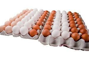 たまごのソムリエセット80個入(破損保証20個含む)【送料無料】定期購入卵かけ 卵ご飯 卵かけご飯 たまごかけ ごはん 卵 たまごかけご飯 卵かけご飯 たまごかけ御飯 卵かけ御飯 醤油にぴった