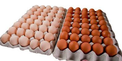 たまごの和食洋食セット80個入【送料無料】定期購入卵かけ 卵ご飯 卵かけご飯 たまごかけ たまごかけごはん 卵 ごはん たまごかけご飯 卵かけご飯 たまごかけ御飯 卵かけ御飯 醤油にぴったり たまごのソムリエ 小林ゴールドエッグ