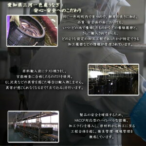 愛知県三河一色産うなぎの兼光うなぎ蒲焼(中)タレ・山椒付き136g〜155g