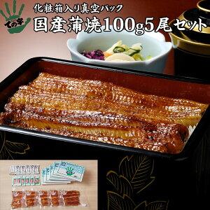 うなぎ 鰻 国産 蒲焼 ギフト プレゼント 100g×5セット ての字 化粧箱入り