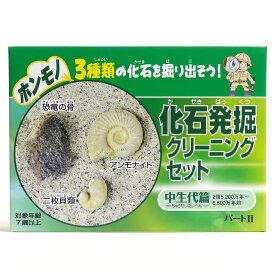 化石発掘クリーニングセット(新)中生代編