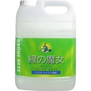 【2本セット】緑の魔女キッチン業務用 5L 洗剤 緑の魔女 5kg×2 業務用 5KG 食器用 パイプクリーナー 排水管掃除 洗剤業務用 洗剤パイプクリーナー 緑の魔女業務用 業務用洗剤 パイプクリーナ