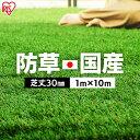 ≪ポイント20倍≫【レビュー記載でおまけプレゼント】人工芝 ロール 1m×10m 芝丈30mm RP-30110 国産 リアル人工芝 防…