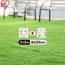【レビュー記載でおまけプレゼント】人工芝 ロール 2m×5m 芝丈30mm IP-3025 国産 人工芝 リアル人工芝 国産人工芝 人…