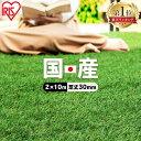 【レビュー記載でおまけプレゼント】人工芝 ロール 2m×10m 芝丈30mm IP-30210 国産 人工芝 リアル人工芝 国産人工芝 …