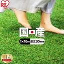【レビュー記載でおまけプレゼント】人工芝 ロール 1m×10m 芝丈30mm IP-30110 国産 人工芝 リアル人工芝 国産人工芝 …