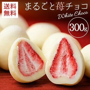 ★ポイント5倍★イチゴ チョコ イチゴチョコ まるごといちごチョコ ホワイトチョコがけ 300g 6001いちごチョコ いちごトリュフ いちごまるごと スイーツ ストロベリー フリーズドライ フルー