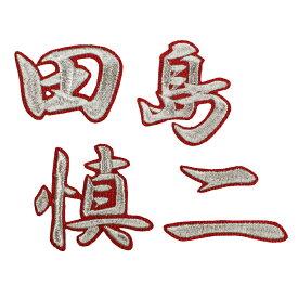 ■送料無料■田島慎二 ネーム (行銀/赤) 刺繍 ワッペン ■中日ドラゴンズ■応援■ユニフォーム■