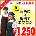 エプロン 胸当てエプロン バッククロス 三角巾 セット 選べる5カラー【楽天最安値に挑戦 ランキング1位獲得 メール便…