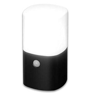 アイリスオーヤマ センサーライト ガーデン LED 乾電池式 角型 ZSL-MN1K-BK[cb]