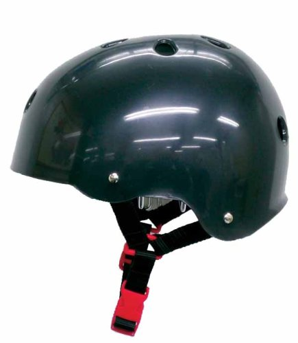 Silver Fox プロテクター 大人用ヘルメット ブラック L SC110