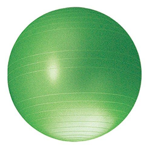 武田コーポレーション 【エクササイズ・ヨガ・ジム・】 ノンバースト フィットネス ボール 55cm グリーン NBF04-55LGR