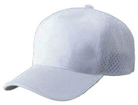 ZETT(ゼット) 野球 ベースボールキャップ (アメリカンバックメッシュ) BH167 ホワイト フリーサイズ