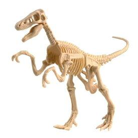 エデュトーイ 恐竜発掘キット ヴェロキラプトル【ボーネルンド】