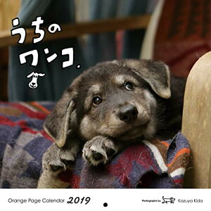 オレンジページ うちのワンコ。壁掛カレンダー2019 ([カレンダー])[un]
