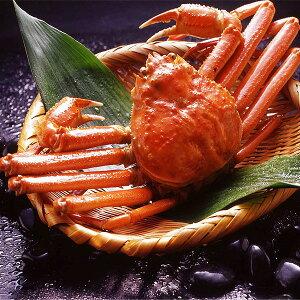【身入り抜群のA級品!】カナダ産ボイルズワイガニ姿・約750g×1尾 冷凍ズワイ蟹