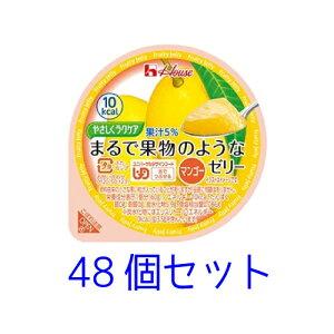 ハウス やさしくラクケア【区分3 舌でつぶせる】まるで果物のようなゼリー マンゴー60g 48個セット