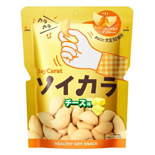 大塚製薬ソイカラ チーズ味 18袋セット【RCP】