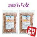【国産】 讃岐もち麦 ダイシモチ500g×2袋セット 食物繊維豊富!★日本全国送料無料★お試しにも最適!買いまわりにも…