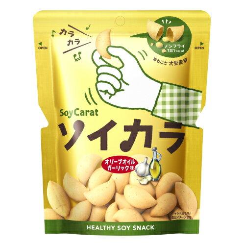 大塚製薬ソイカラオリーブオイルガーリック味 18袋セット【RCP】