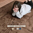 あったか こたつ敷き布団 190×190cm 正方形 2畳 滑り止め付き 床暖房対応 こたつ敷布団 コタツ敷布団 ラグ a960