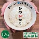 \熊本県産 ひのひかり/送料無料 令和2年産 10Kg ひのひかり お米 10kg(5Kg×2袋) 熊本県産 精米 産地直送 白米 こ…