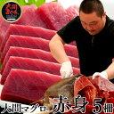 大間本マグロ 赤身200g×5柵 |青森県大間産 大間のまぐろ刺身送料無料