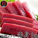 大間マグロ 赤身 200g×3柵 |青森県大間産 大間のまぐろ本マグロ刺身送料無料