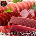 【大間E】大間マグロ 中トロ200g、赤身200g |青森県大間産 大間のまぐろ本マグロ刺身セット 2種食べ比べ 送料無料