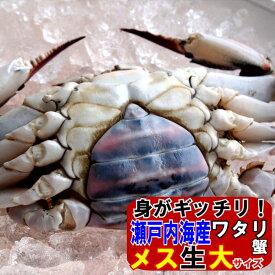 11月発送ワタリガニ メス 選り抜き大サイズ生約2kg(4−6尾)わたりがに、渡り蟹、ガザミヤンニョムケジャン送料無料