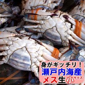 11月発送ワタリガニ メス 選り抜き生小サイズ約2、2kg(8−10尾)送料無料 ケジャンわたりがに、渡り蟹、ガザミ