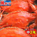 ゆで ワタリガニ メス中(標準)サイズ2尾送料無料わたりがに、渡り蟹、ガザミ