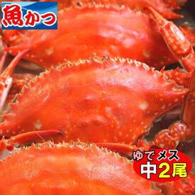 11月発送ゆで ワタリガニ メス中(標準)サイズ2尾送料無料わたりがに、渡り蟹、ガザミ