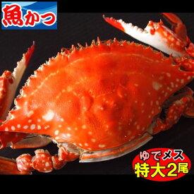 11月発送茹で(ゆで)ワタリガニ メス激レア 特大2尾わたりがに、渡り蟹、がざみかに カニ送料無料