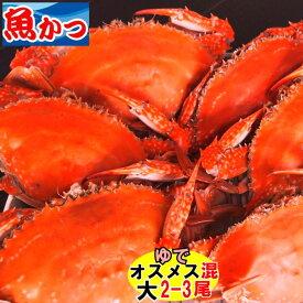 11月発送ワタリガニ メス オス問わず茹で大サイズ渡り蟹 大サイズ2−3尾送料無料 わたりがに、ガザミ