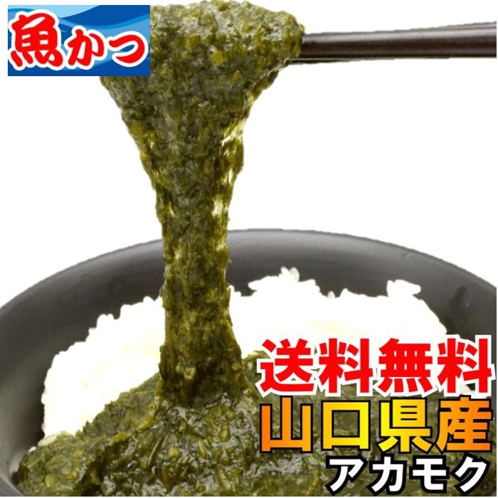 送料無料冷凍アカモク山口県産約35gX24個セットぎばさ、あかもくネバネバ食品