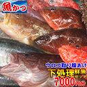 下処理 鮮魚セット7000円分煮付け,焼き魚,刺身魚 鮮魚 詰め合わせお刺身 鮮魚 直送鮮魚セット 送料無料
