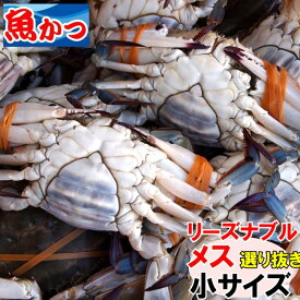 11月発送ワタリガニ メス 選り抜き小サイズ生約1.1kg(4-5尾)送料無料わたりがに、渡り蟹、ガザミケジャン