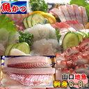 刺身 柵刺身 盛り合わせお刺身 セット 6-8人前手巻き寿司 セット鮮魚セット 送料無料魚 鮮魚 海鮮魚 詰め合わせ