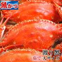 ワタリガニ メス、オス問わず茹で大サイズワタリガニ 1kgUP渡り蟹、大サイズ2−3尾送料無料わたりがに、ガザミ