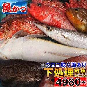 下処理鮮魚セット魚 詰め合わせ 送料無料お刺身 鮮魚 詰め合わせ刺身 盛り合わせ焼き魚 煮魚美味しい 魚 お取り寄せ 海鮮セット 魚