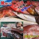 【月間優良ショップ受賞】下処理鮮魚セット魚 詰め合わせ 送料無料刺身 鮮魚 詰め合わせ刺身 盛り合わせ 寿司鮮魚 下…